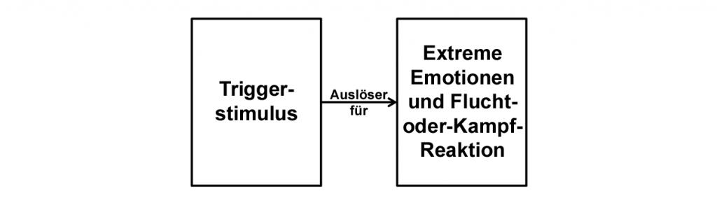Der Triggerstimulus führt scheinbar direkt zur extremen Emotion