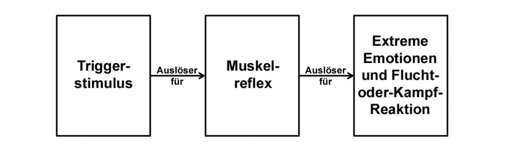 Der Trigger erzeugt den Muskelreflex, welcher wiederum für die Emotion verantwortlich ist