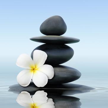 Bild mehrerer übereinandergestapelter Steine, hinter einer Blumenblüte liegend