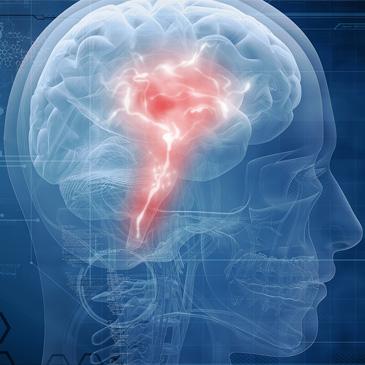 Blau eingefärbtes Röntgenbild eines Kopfes, Seitenansicht, im mittleren Bereich rot eingefärbt