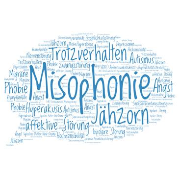 Sprechblase mit den Fehldiagnosen für Misophonie